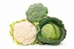 broccoli--cavoli-e-cavolfiori-354918.jpg