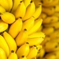 170413_bananas