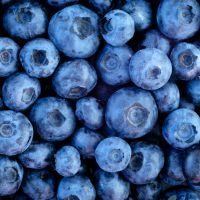 150723_blueberries